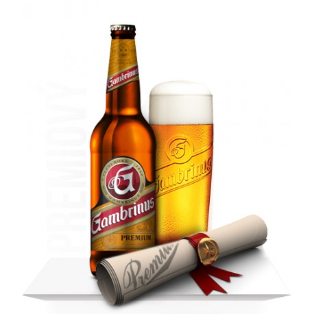 Gambrinus Premium (20 x 0,5 l bottled)