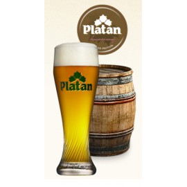 Platan Yeast pale lager (30 l keg)